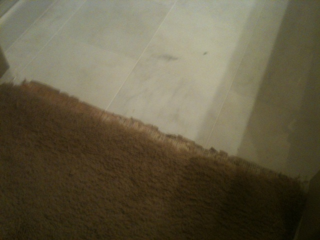 BEFORE: Carpet Transition Fraying & Pulling Away