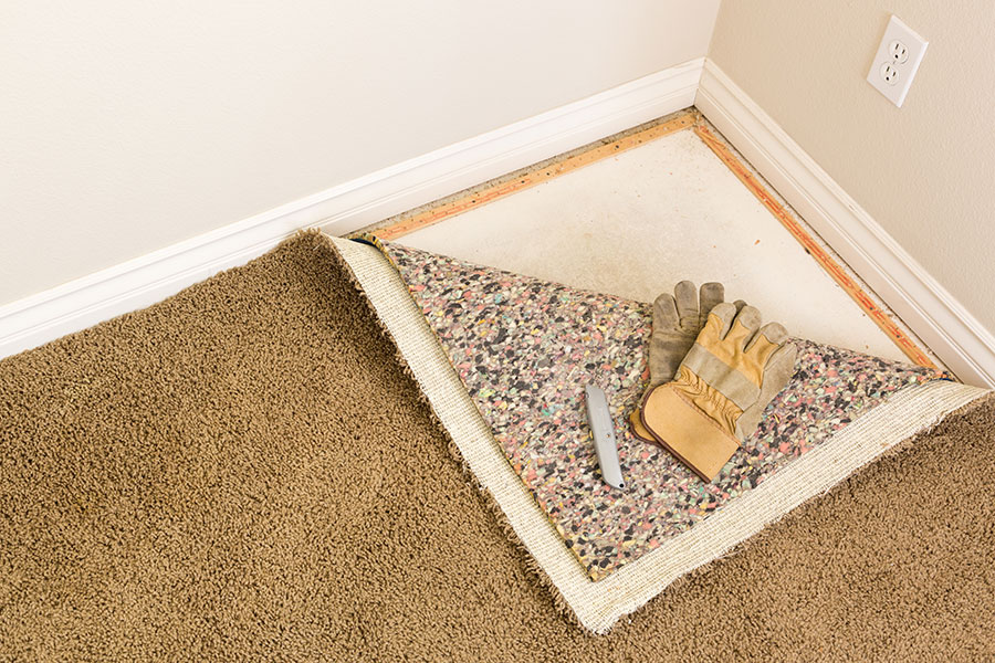 How to Pick Carpet