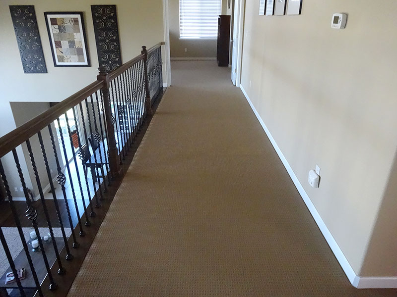 Carpet Repair Aurora Co Patching Pet Damage Stretching