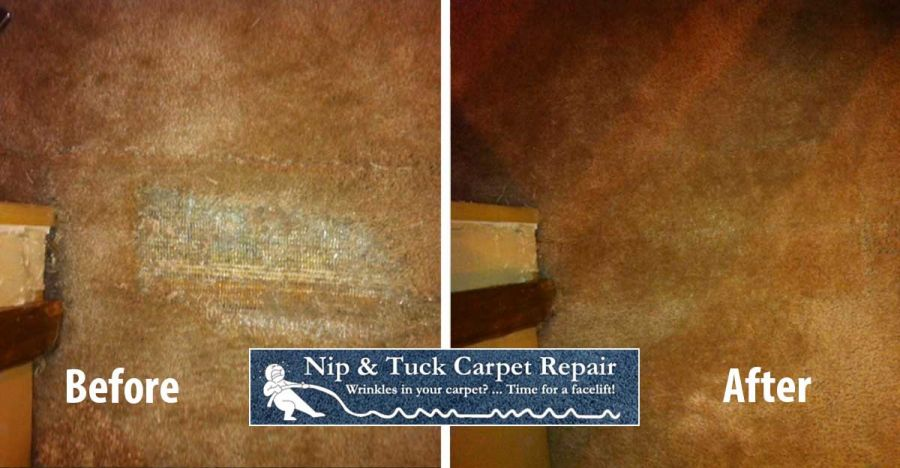Pet Damage, Before & Afters, Carpet Repair & Stretching Photos