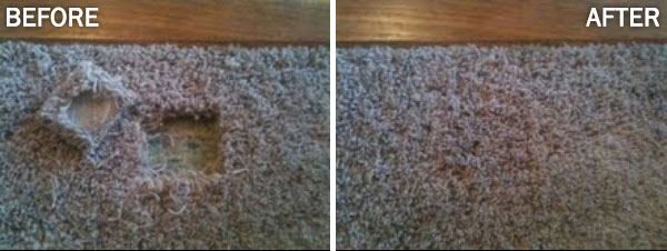 Where does the carpet from a patch come from